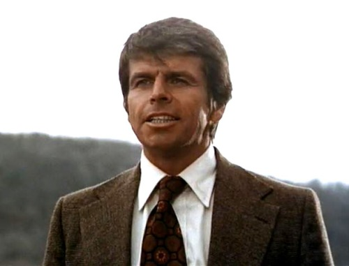 William Devane II copy